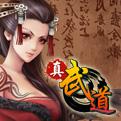 真·武道网页游戏最新开服表