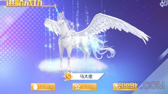 QQ炫舞手游宠物升级与进阶攻略