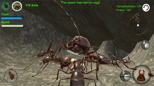 蚁族崛起手游截图