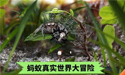 蚂蚁文托模拟器截图