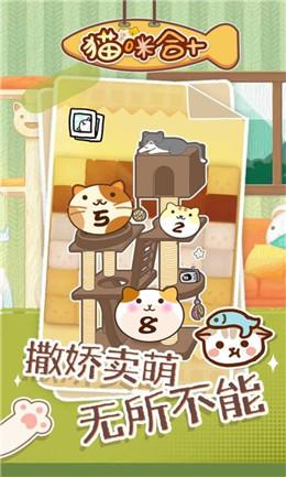 猫咪合十截图