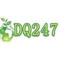 dq247