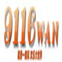 9116wan